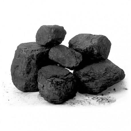 Węgiel Orzech  Piast